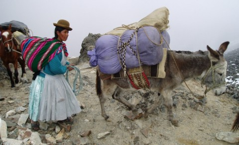 3600m afdalen: Takesi Trail Bolivia