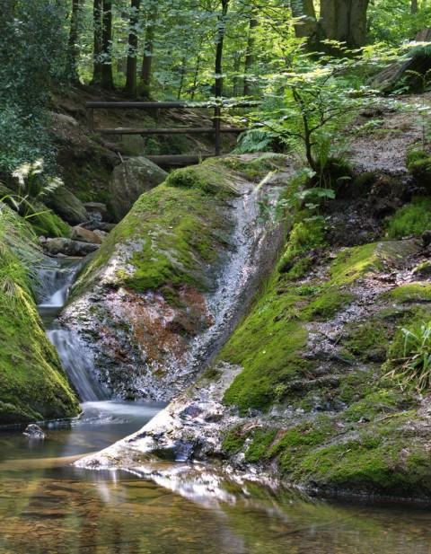 Een klim langs de wildste beek van België