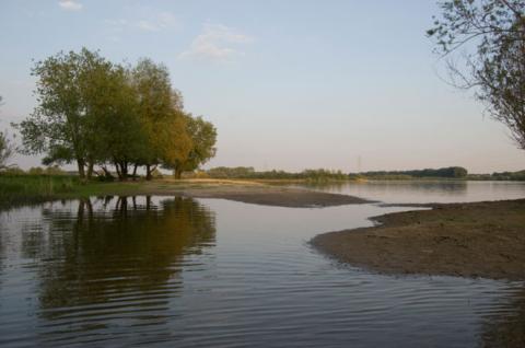'Water wandelen' op de Asseltse plassen