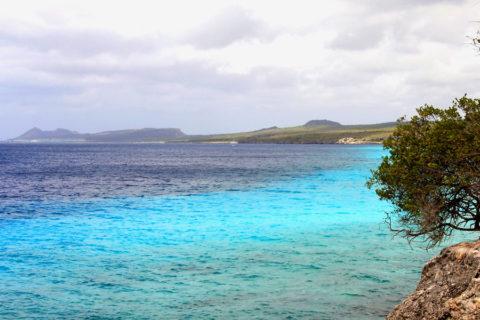Wandelen en fietsen op ons eigen Bonaire