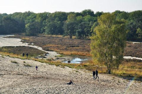26 maart: Walking Event De Maashorst