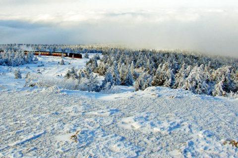 Harz-tochtelijke winterwandelingen met of zonder stoomtrein