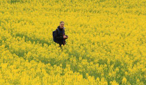 Live vanuit de Hunsrück: genieten van de lente