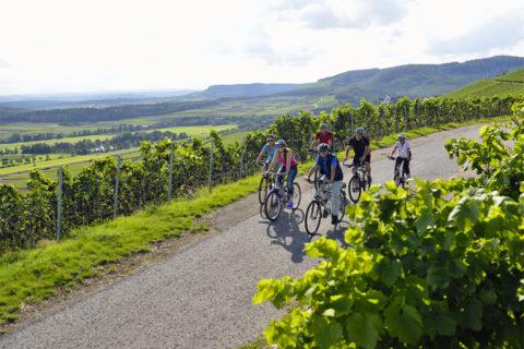 Fietsen langs beschermde beek door de Zuid-Duitse wijnstreek Kraichgau