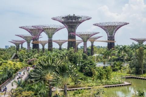 Wonderlijke parken in Singapore