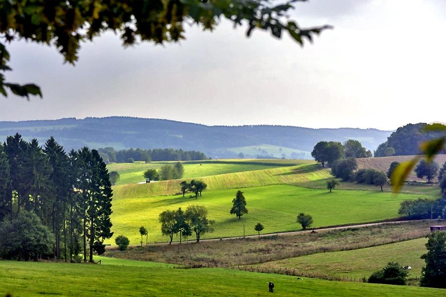 Uitzicht-Sauerland-bij-Drab