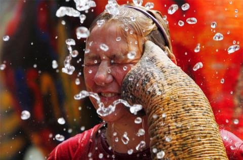 Drie Bijzondere Festivals in Thailand