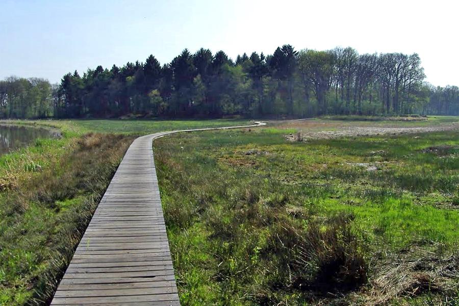 Landschap-Drentse-Aa