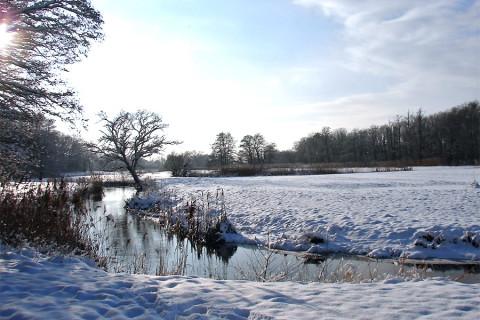 Winterwandeling: Drenthe in het klein