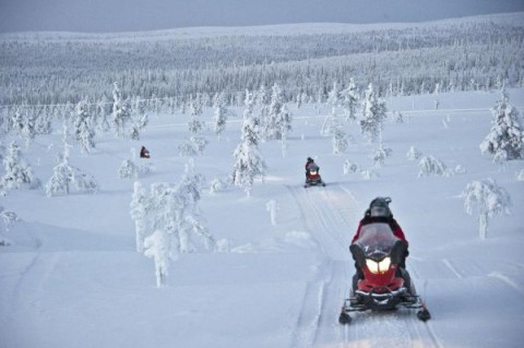 Wintersafari en bijzonder overnachten in Lapland