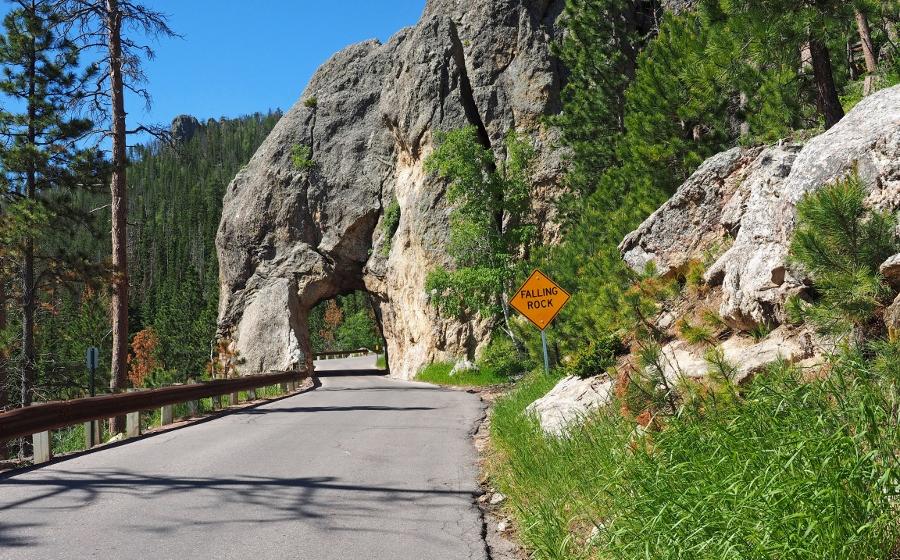 Verassingen onderweg in het Custer State Parc (foto Rene en Lione van Kolsteren)