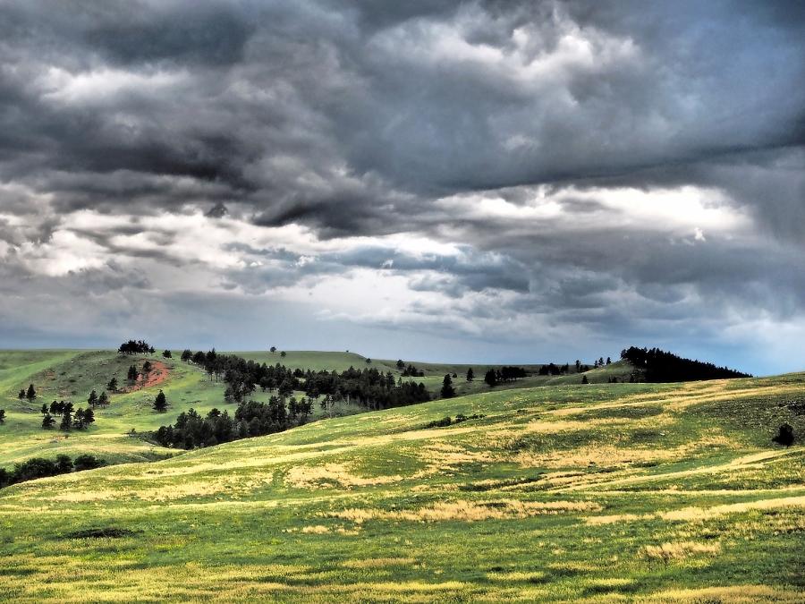 Custer State Parc... (foto Rene en Lione van Kolsteren)