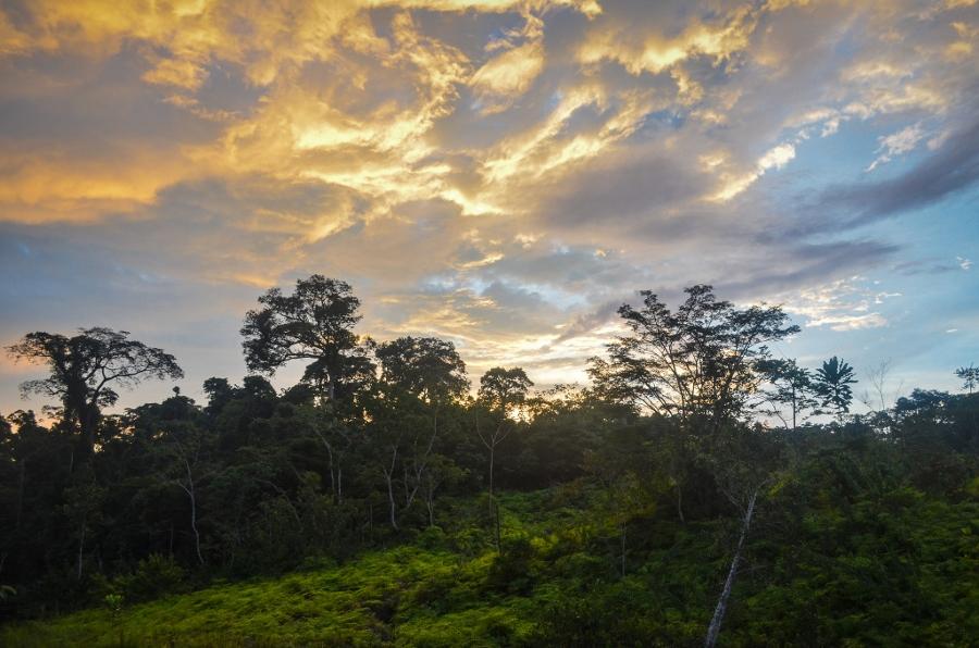 Gabon (foto www.jbodane.com)