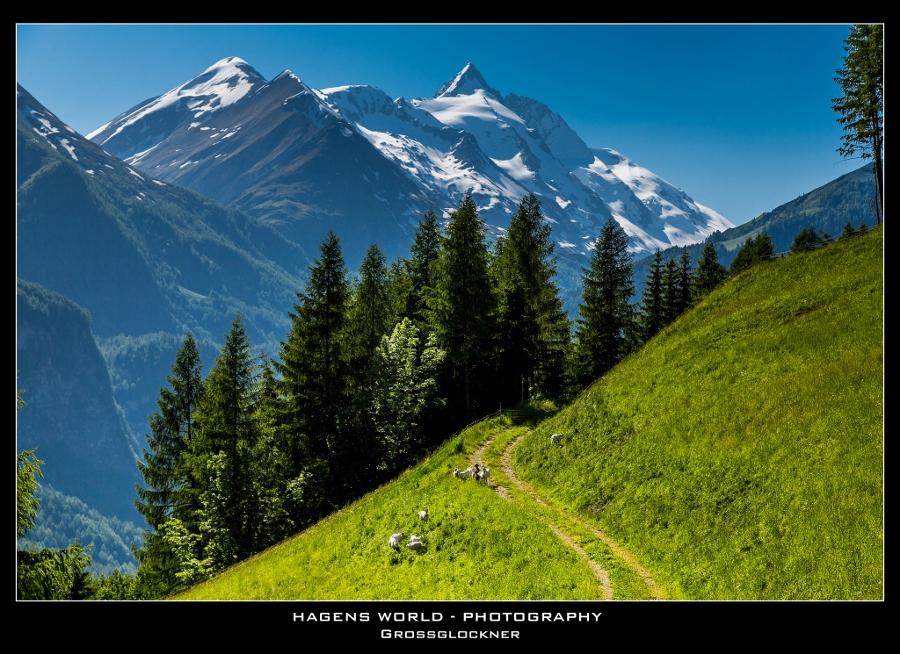 Hagens World The Alps (10)