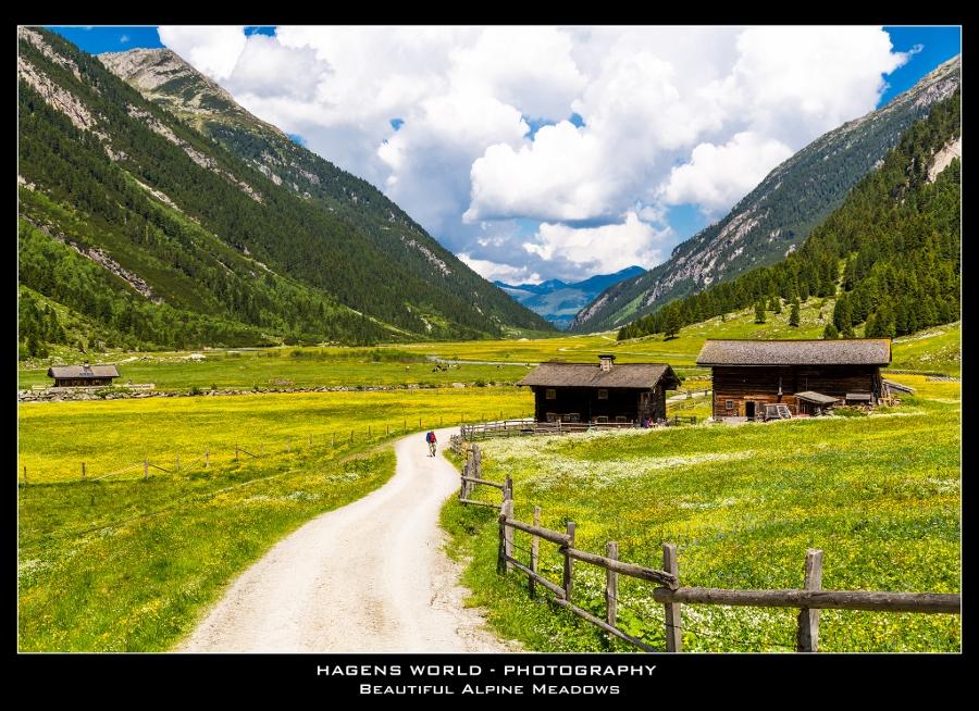 Hagens World The Alps (12)