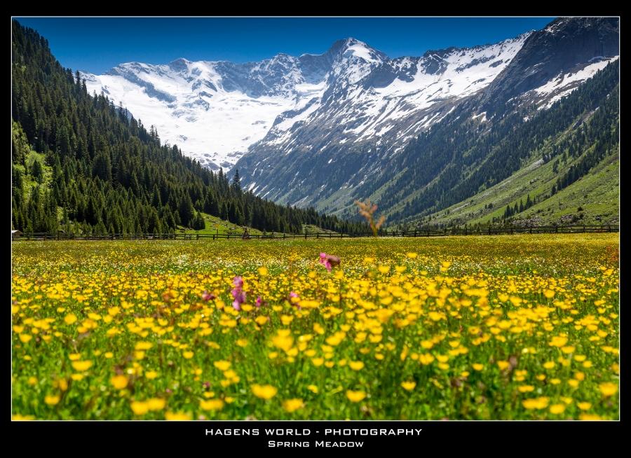 Hagens World The Alps (5)