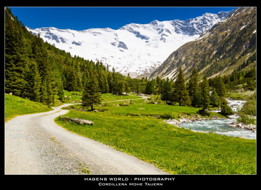 Hagens World The Alps (8)