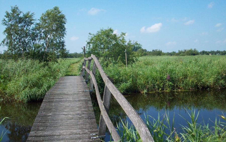 Over smalle bruggetjes en graspaden... (foto Wikimedia)