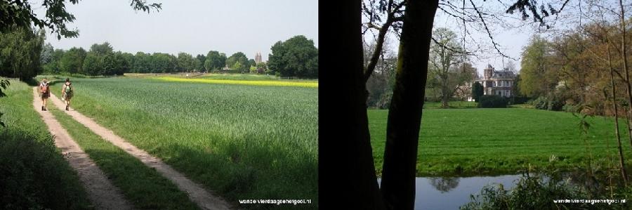 Foto: Wandelvierdaagse 't Gooi