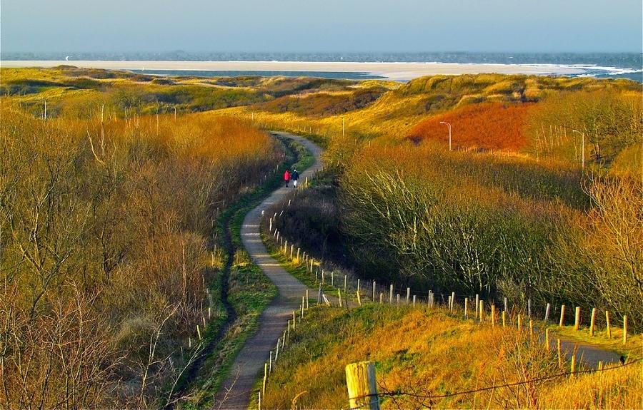 Door onze duinen? (foto Roel Wijnants, flickr)