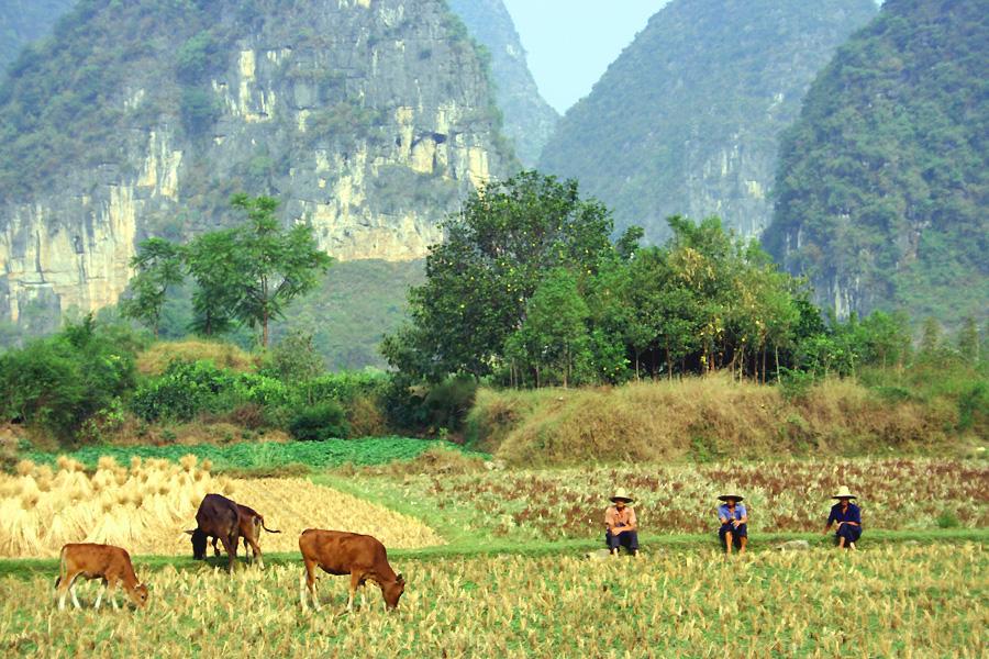 landschap-fietsen-china