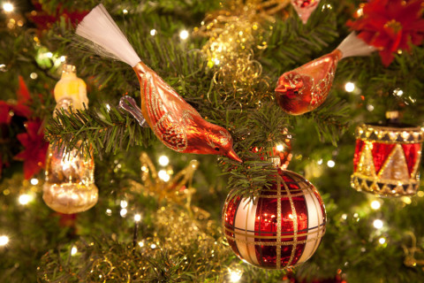 Onze kerst was kerst niet zonder de Thüringers