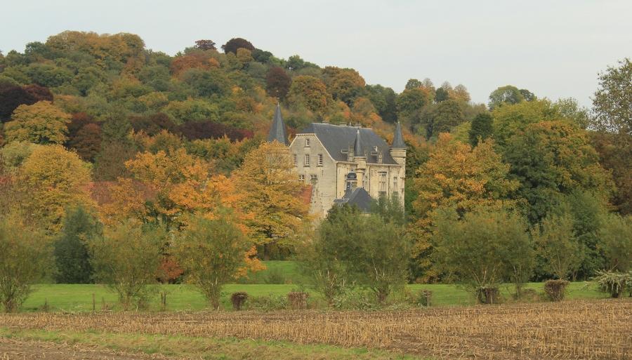 Limburg herfst (1)