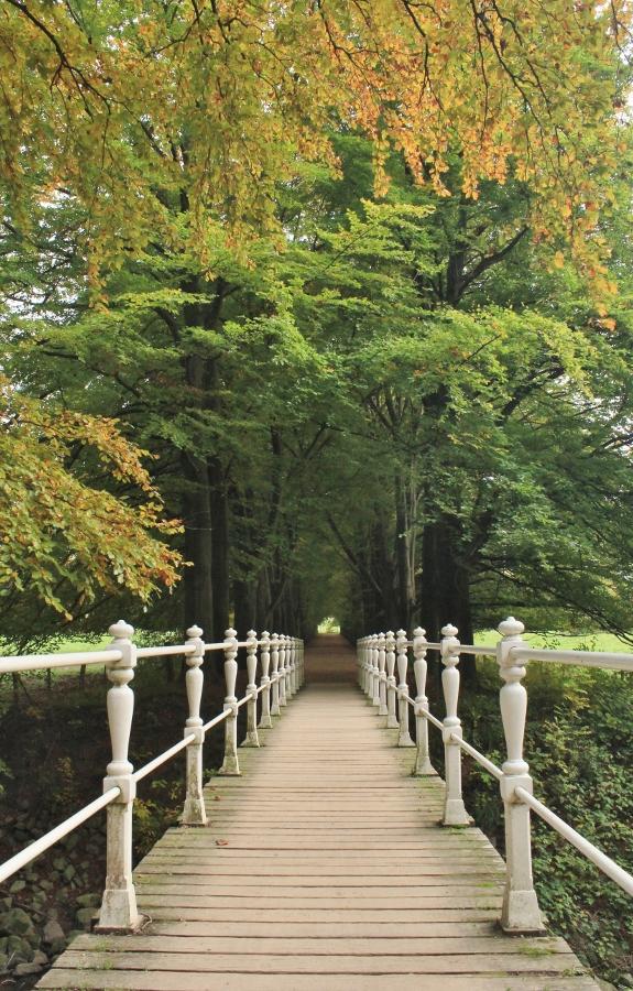 Limburg herfst (3)