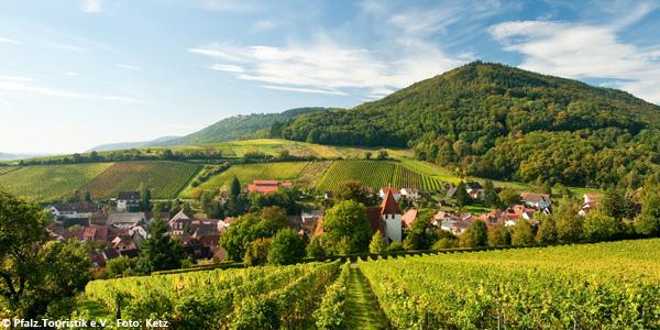 Pfalz-wandelen