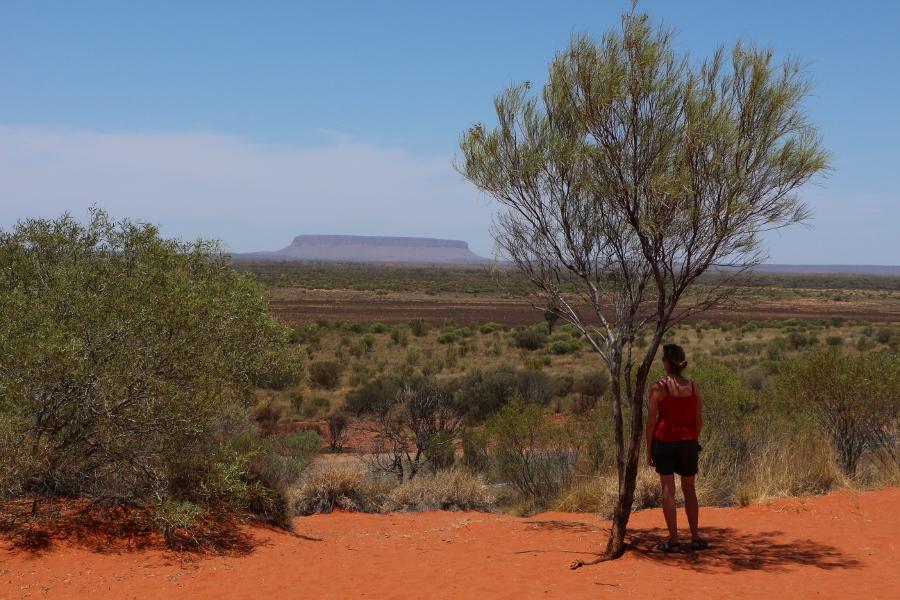 IMG_9972 Vergis je niet, dit is niet Uluru maar Mt. Connor (900x600)