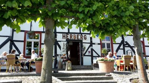 De gezelligste wandelingen van Limburg