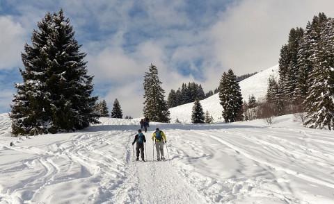 De Ardennen zijn helemaal ingesteld op winterwandelaars