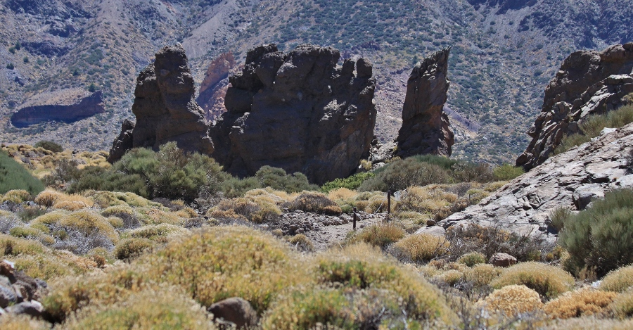 Teide canadas (18) (900x469)