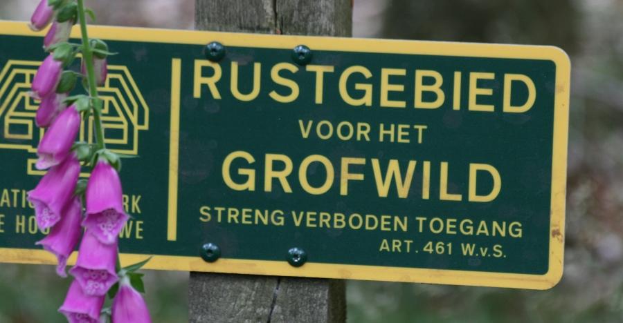 rustgebied (900x468)