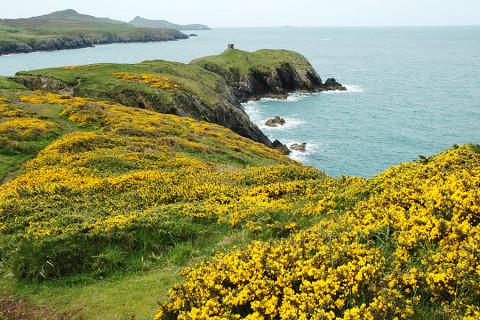 Zou je deze mooiste kustroute van Wales niet eens willen lopen?