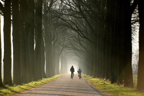 Drie 'oostelijke' fietsvierdaagsen medio juni