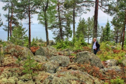 Ongerept en onontdekt: 10 redenen om in Hälsingland te gaan wandelen