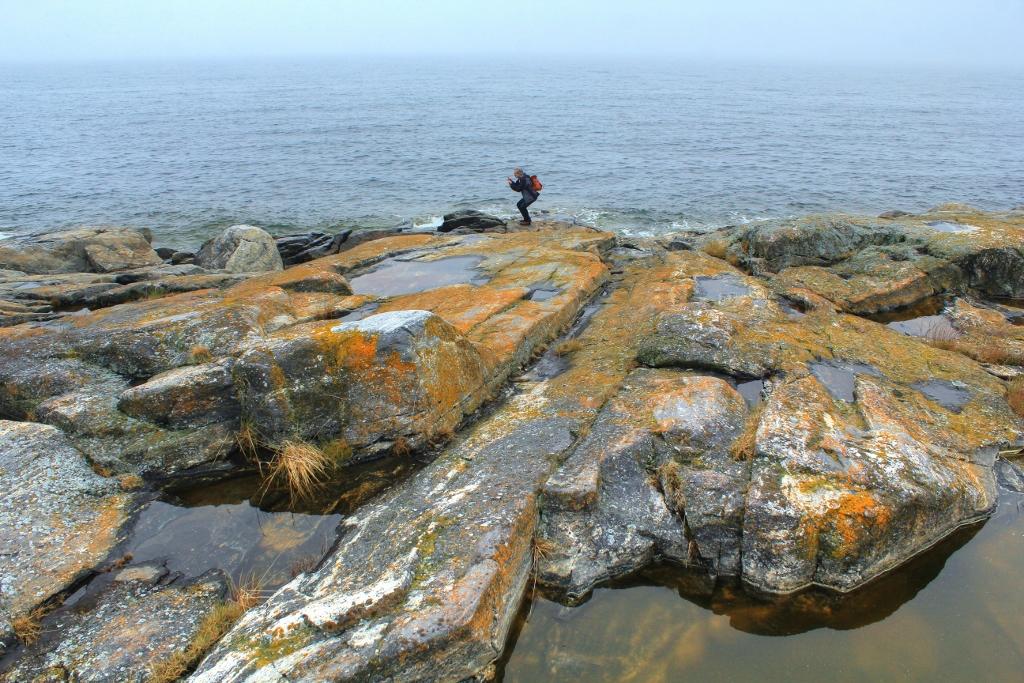 Hälsingland kust (8)