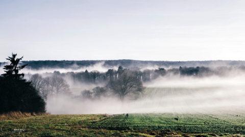 De mooiste plekken in de Ardennen voor herfst en winter