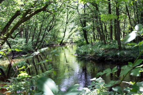 Wandeltips voor het rustieke Leudal in Zuid-Limburg