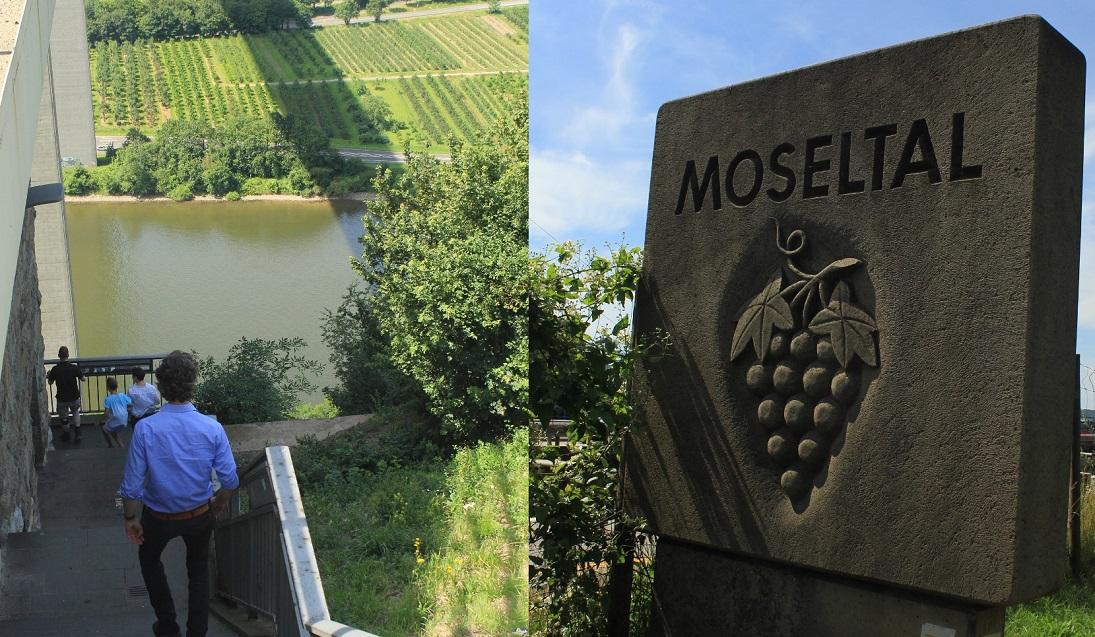 mossel (2) (826x1024)