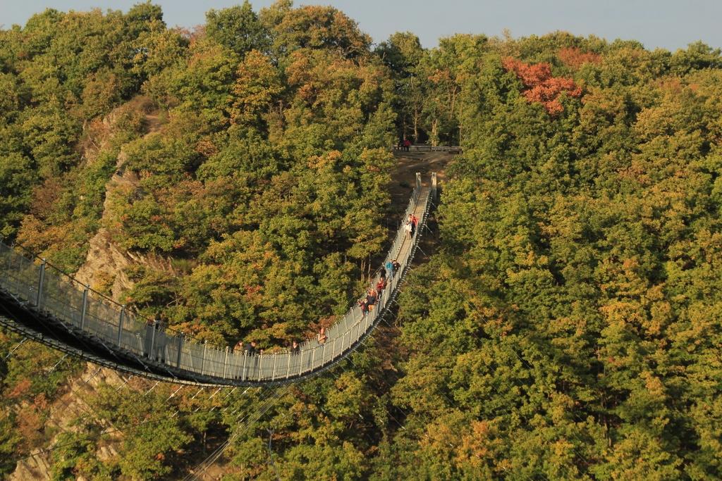 een-heerlijk-herfstzon-zet-de-brug-mooi-in-het-licht