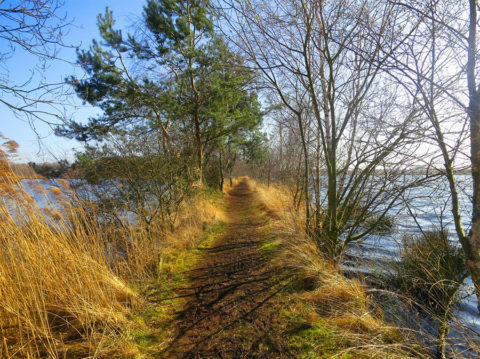 25 november: Veentocht door Nationaal Park de Groote Peel
