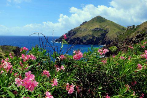 Wat weten we over hiken op Saba?