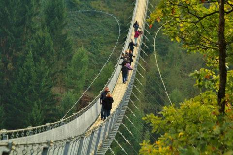 Samen de natuur in met als hoogtepunt de oversteek van de langste hangbrug van Duitsland