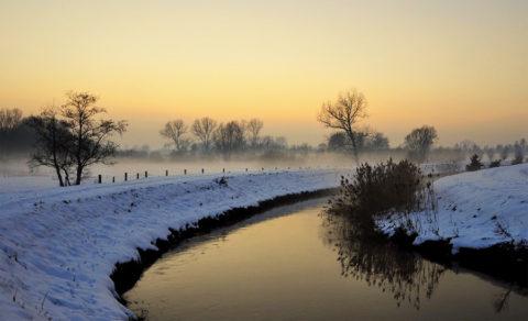 De mooiste winterwandelingen in de Belgische Kempen