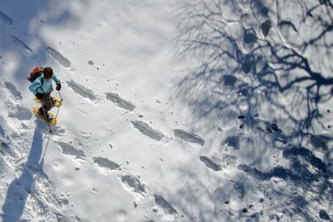 Wat maakt sneeuwschoen wandelen tot gezondste wintersport?