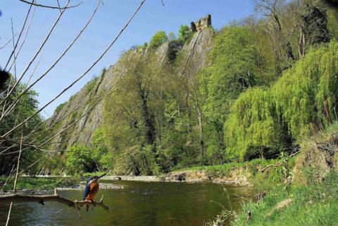 Wandelen langs de Amblève in de Ardennen