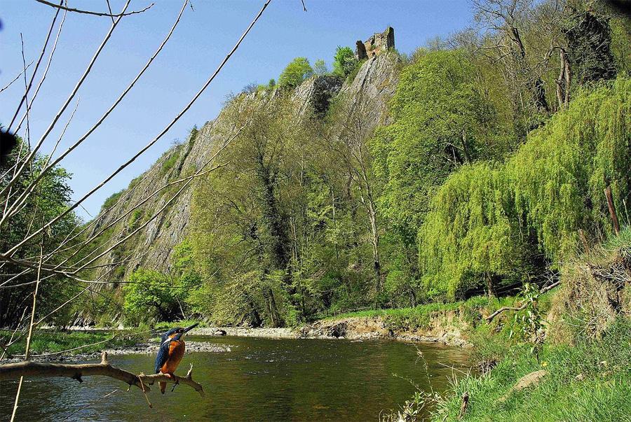 Wandelen Langs De Ambleve In De Ardennen