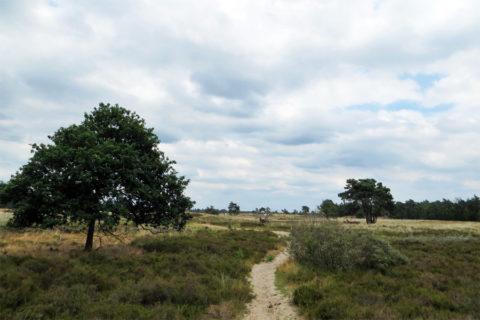 9 april: De 'Verbeeten Challenge' rond Tilburg